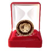 Медаль Национальная безопасность